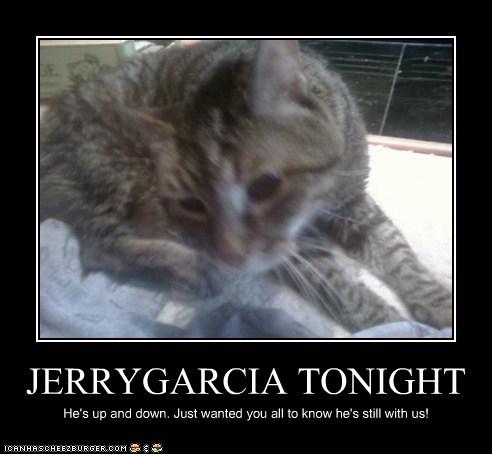JERRYGARCIA TONIGHT