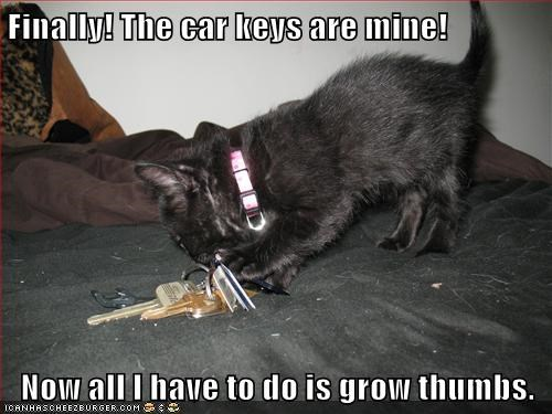 Finally! The car keys are mine!  Now all I have to do is grow thumbs.