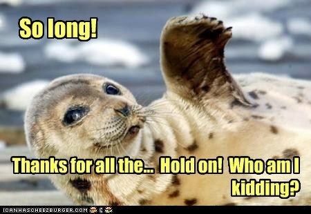 seal,kidding,Hitchhikers Guide To the Galaxy,so long and thanks for all the fish,so long