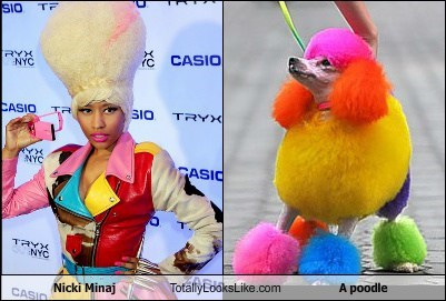 Nicki Minaj Totally Looks Like A Poodle