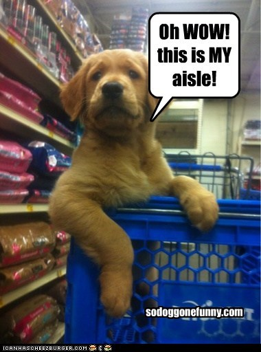 Oh WOW! this is MY aisle!
