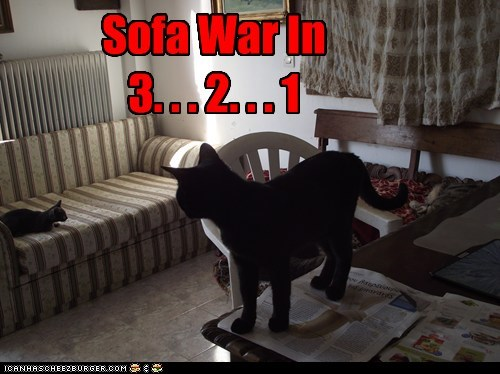 Sofa War In  3. . . 2. . . 1