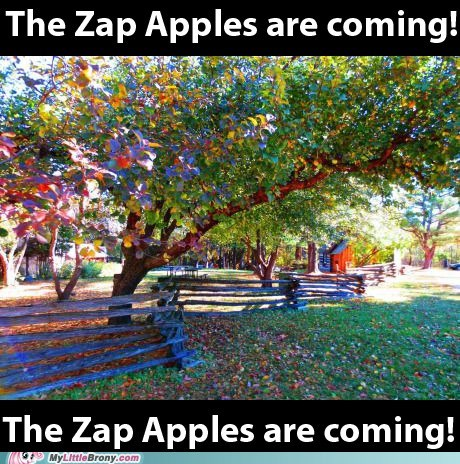 The Zap Apples Are Coming!