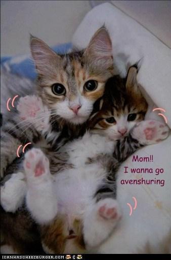 brave explorer kitteh,adventure,wiggle,squirm,run away,mom,kid,child,Cats,captions
