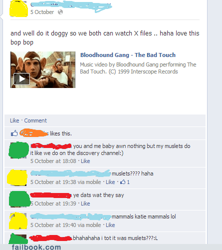bloodhound gang,the Bad Touch,misheard lyrics