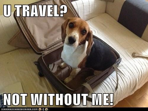 U TRAVEL?  NOT WITHOUT ME!