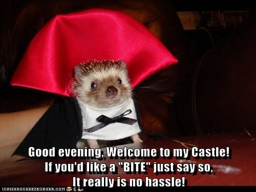 "Good evening, Welcome to my Castle!                              If you'd like a ""BITE"" just say so,                                          It really is no hassle!"