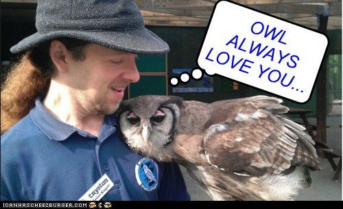 OWL ALWAYS LOVE YOU...