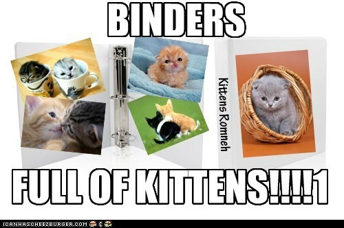 kitten,puns,binders full of women,binders,original,politics,Mitt Romney