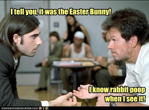 funny,actor,celeb,Jason Schwartzman,Mark Wahlberg