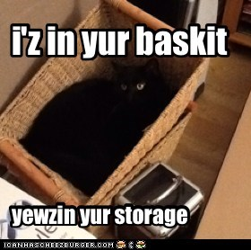 i'z in yur baskit