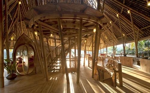 hotel,resort,tree house,design,architecture