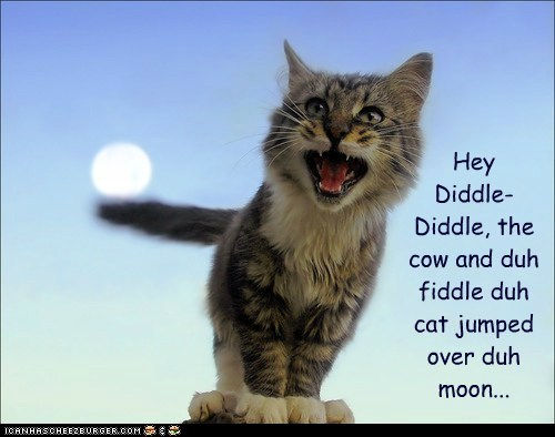 Hey  Diddle- Diddle, the cow and duh fiddle duh cat jumped over duh moon...