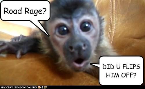 Road Rage?