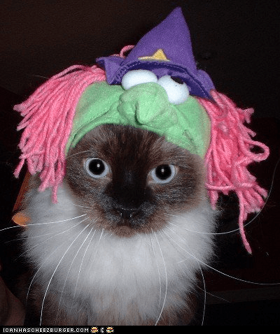#5 - Bodhi as a witch