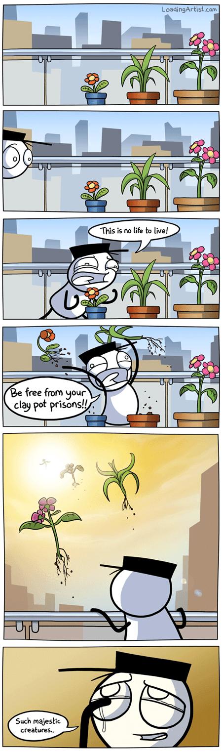 comic,freedom,plants,fly away