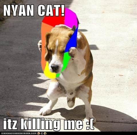 NYAN CAT!  itz killing me :(