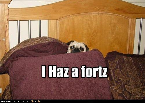 dogs,bed,pug,pillow fort