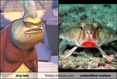 slug lady Totally Looks Like unidentified creature