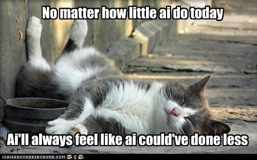 lazy,sleep,relax,sloth,Cats,captions