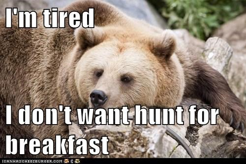 I'm tired  I don't want hunt for breakfast