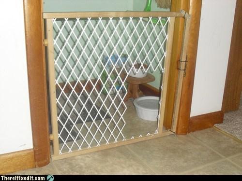 barricade,gate,cat gate