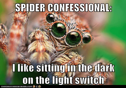 scary,light switch,confessional,spider,dark