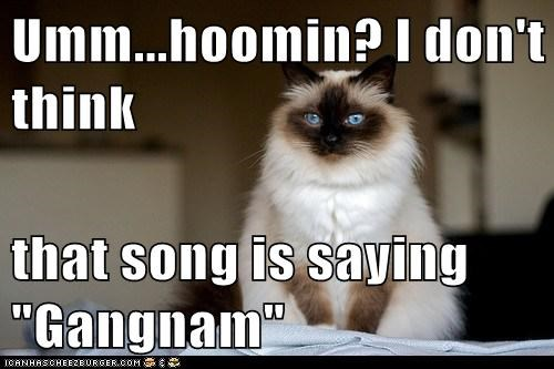 "Umm...hoomin? I don't think  that song is saying ""Gangnam"""