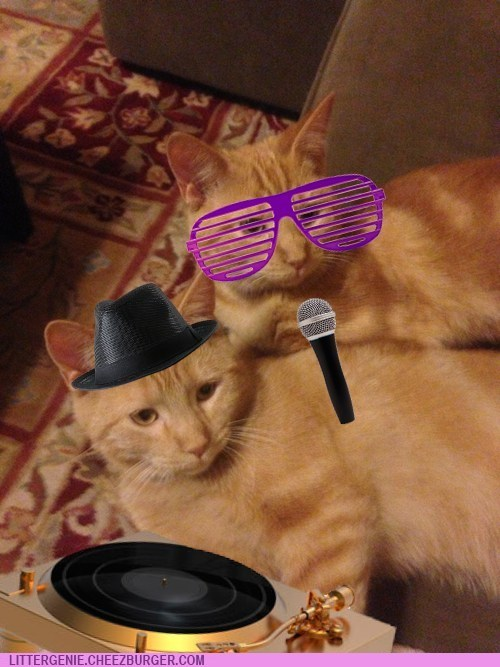 DJ Mixmaster Meow and Claws