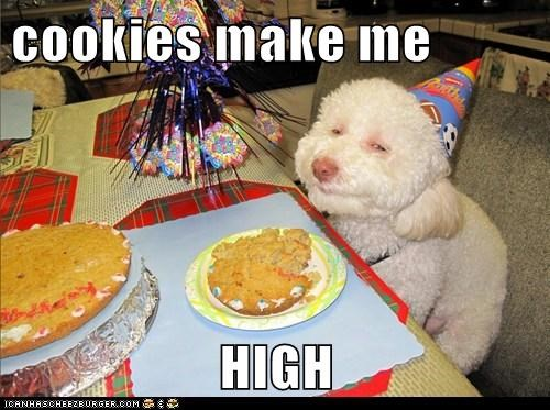 cookies make me  HIGH