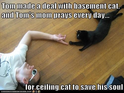 Tom made a deal with basement cat, and Tom's mom prays every day...  for ceiling cat to save his soul