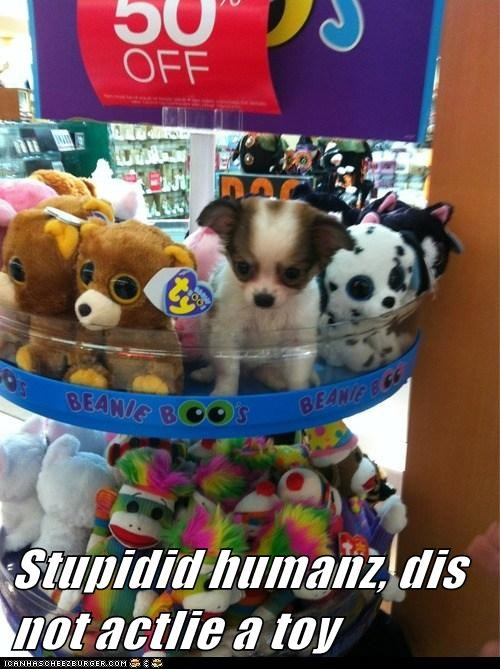 Stupidid humanz, dis not actlie a toy