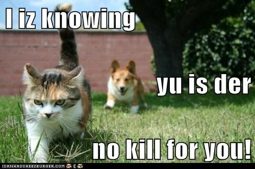 I iz knowing  yu is der no kill for you!