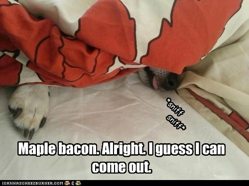 Maple bacon. Alright. I guess I can come out.