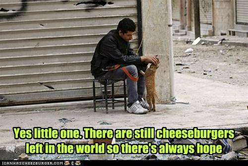 Sad,petting,cat,hope,cheeseburgers