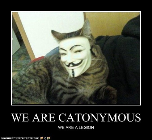 WE ARE CATONYMOUS