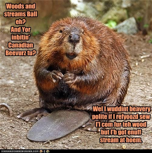 Woods and Streams Ball~Beaver Planz Fur A Tail Slappin' Gud Tiem.