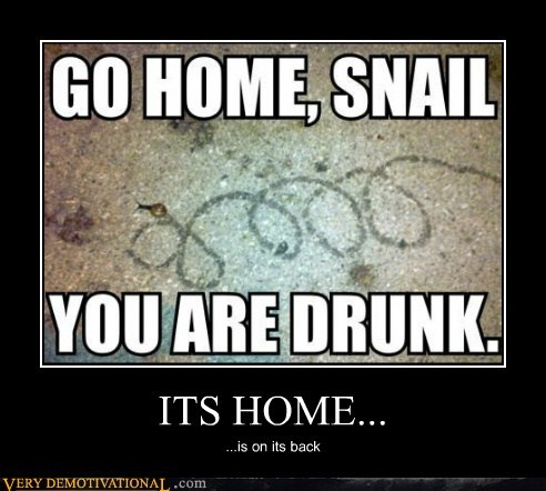 Who Gave That Snail Liquor?