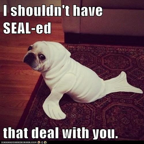 I have SEAL-ed my fate...