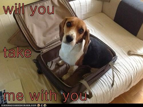 will you take me with you