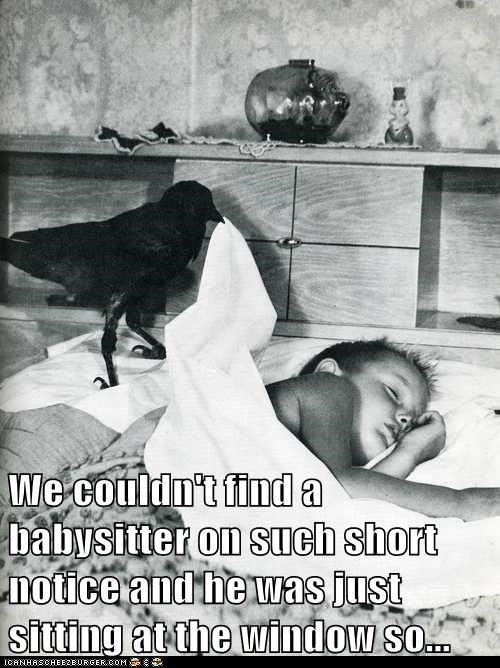 babysitter,bed,raven,kid,sleep,crow