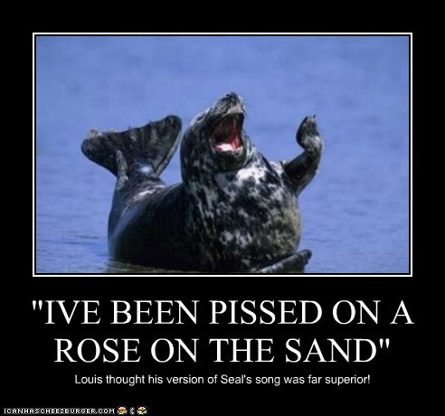 """IVE BEEN PISSED ON A ROSE ON THE SAND"""