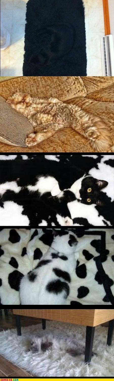 Camouflage, Level Cat