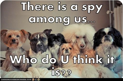 There is a spy among us...  Who do U think it is??