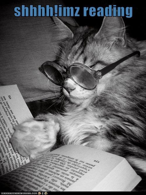 shhhh!imz reading