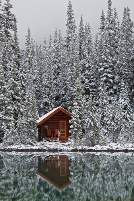 Cabin in the (Snowy) Woods