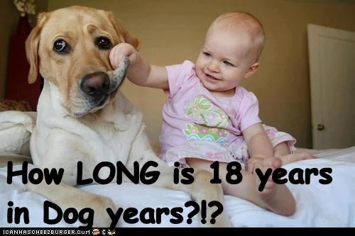 How LONG is 18 years in Dog years?!?
