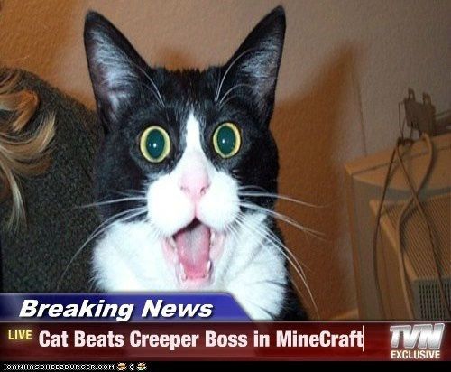 Breaking News - Cat Beats Creeper Boss in MineCraft