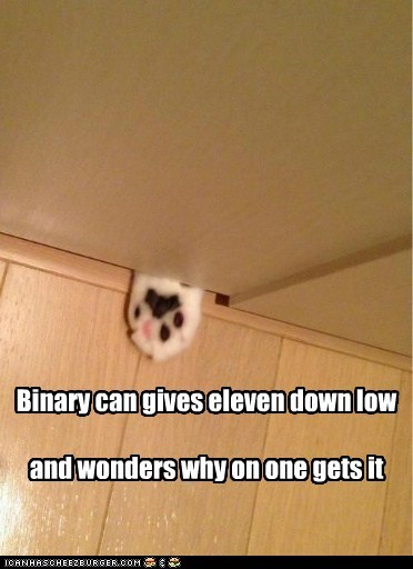 Binary cat