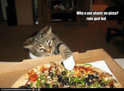 Why u put plantz on pizza?